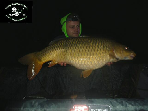 Screenshot_2020-05-02_Carp_Performance_-_Fotos8